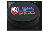 Rondelle de Hockey Image