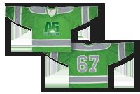 Gilet de Hockey Image